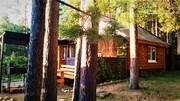 Сдаю дом в красивейшем месте Селигера - в сосновом бору,  на берегу озера. Со всеми удобствами